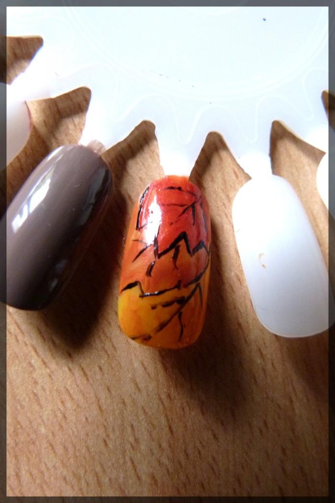 Aux couleurs de l'automne ! autonme-0111